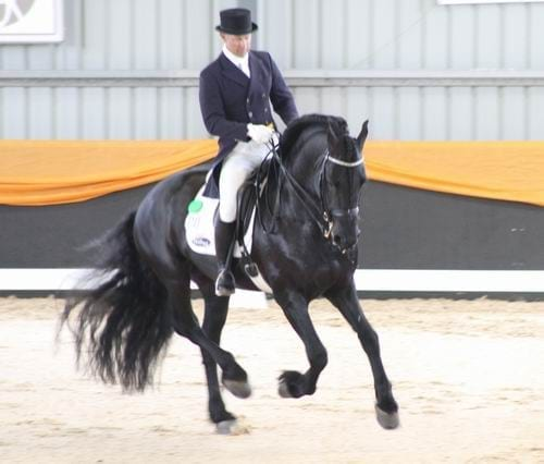 Dressage with Altitude 2012